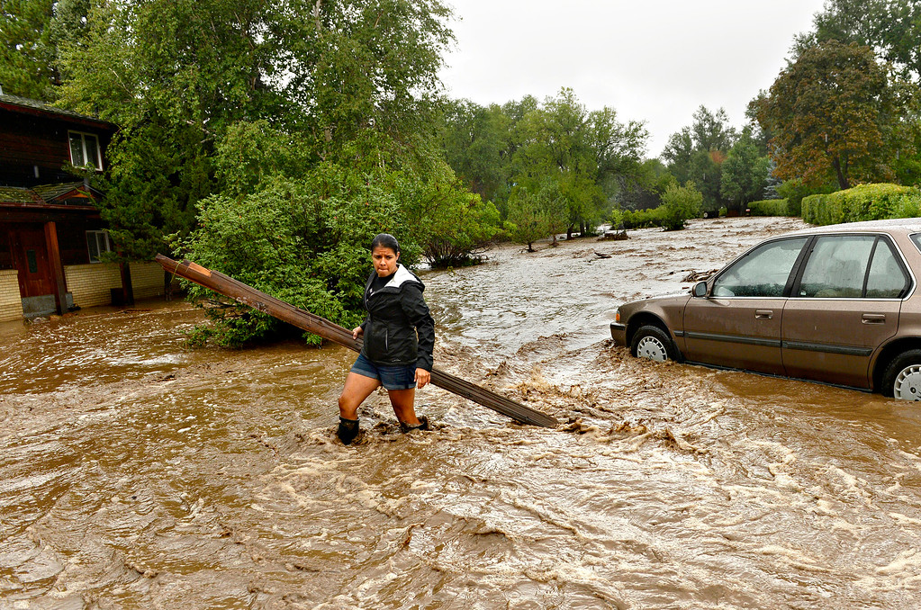Description of . Sonia Chacon clears debris from around her family's home in north Boulder on Sept. 12, 2013. Nearly every road heading into the foothills of Boulder, Larimer and northern Jefferson counties was blocked by floodwaters or debris. Both of Chacon's family's cars were stuck in a foot of mud, and the first floor of their home was flooded.
