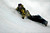 ASPEN, CO - JANUARY 27: Greg Bretz takes a spill during the men's snowboard superpipe final. X Games Aspen Buttermilk Mountain Aspen January 27, 2013.