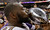 Baltimore Ravens defensive end Arthur Jones (97) kisses the Vince Lombardi Trophy after defeating the San Francisco 49ers 34-31 in the NFL Super Bowl XLVII football game, Sunday, Feb. 3, 2013, in New Orleans. (AP Photo/Dave Martin)