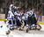 DENVER, CO. - FEBRUARY 28: Mustangs players surrounded goalie Zach LaRocque who got the win Friday night. Ralston Valley High School beat Monarch 5-1 Friday night, March 1, 2013 to claim the state title at Magness Arena in Denver. (Photo By Karl Gehring/The Denver Post)