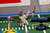 Kitty half time show during Puppy Bowl IX(Photo credit: Animal Planet)
