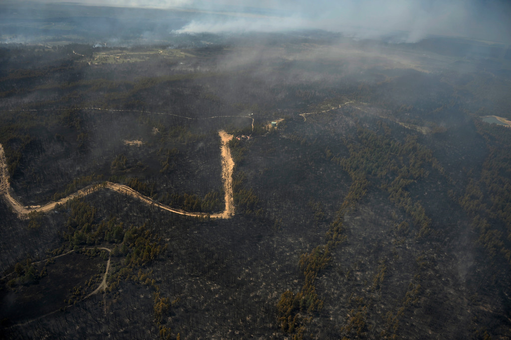 Description of . COLORADO SPRINGS, CO. - June 13: Damage from the east edge of the Black Forest Fire Colorado Springs, Colorado. June 13, 2013 Denver, Colorado Springs. (Photo By Joe Amon/The Denver Post)