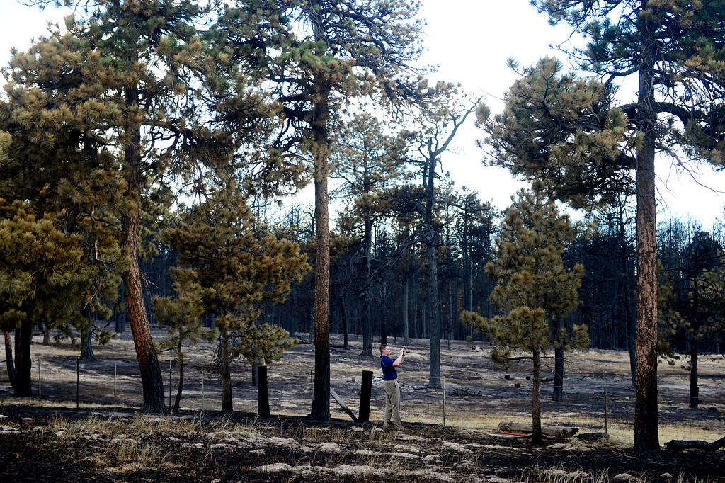 Description of . COLORADO SPRINGS, CO - JUNE 18: Jesse Russow surveys the damage of his rental property, which was the southernmost home burned on the west side of Vollmer Road. The occupant of the home, who was not named, was only able to save himself and his motorcycle as he was away from the property when the evacuation took place. Russow is accepting donations for fire crews at 7195 Templeton Gap Road in Colorado Springs. (Photo by AAron Ontiveroz/The Denver Post)