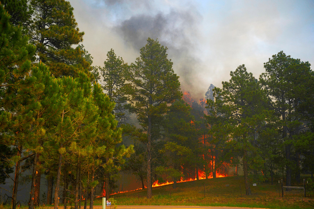 Description of . COLORADO SPRINGS, CO - JUNE 13: A fire burns on Vollmer Road as the Black Forest fire burns east of Colorado Springs. (Photo by AAron Ontiveroz/The Denver Post)