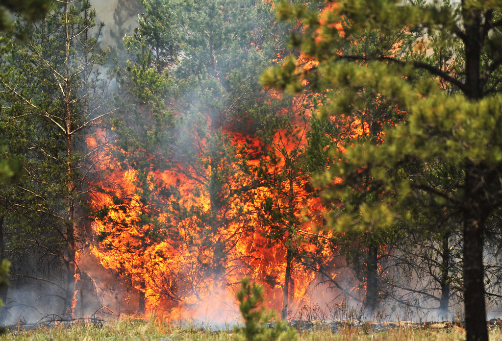 Description of . COLORADO SPRINGS, CO. - June 13: Fire site near Black Forest section 16 trailhead. Colorado Springs, Colorado. June 13, 2013. The Black Forest fire has already destroyed at least 360 homes and consumed 15,000 acres. (Photo By Hyoung Chang/The Denver Post)