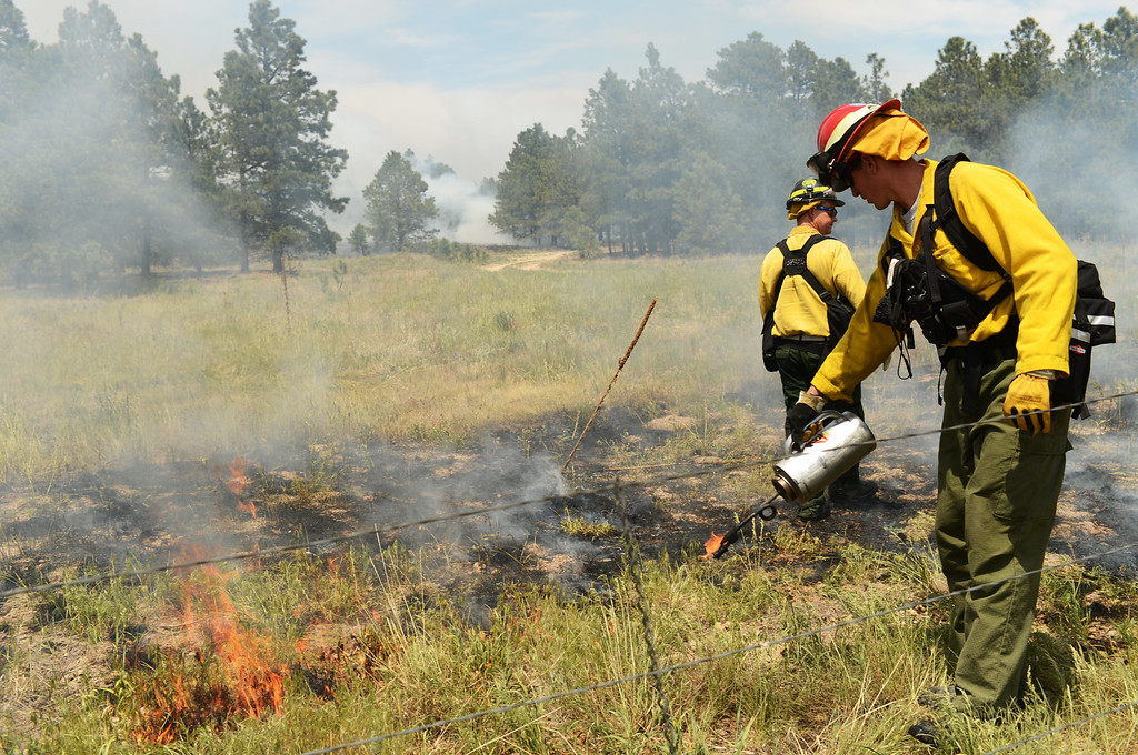 Description of . COLORADO SPRINGS, CO. - June 13: William Gates of Air Force Academy fire department, front, is back burning at Black Forest section 16 trailhead. Colorado Springs, Colorado. June 13, 2013. The Black Forest fire has already destroyed at least 360 homes and consumed 15,000 acres. (Photo By Hyoung Chang/The Denver Post)
