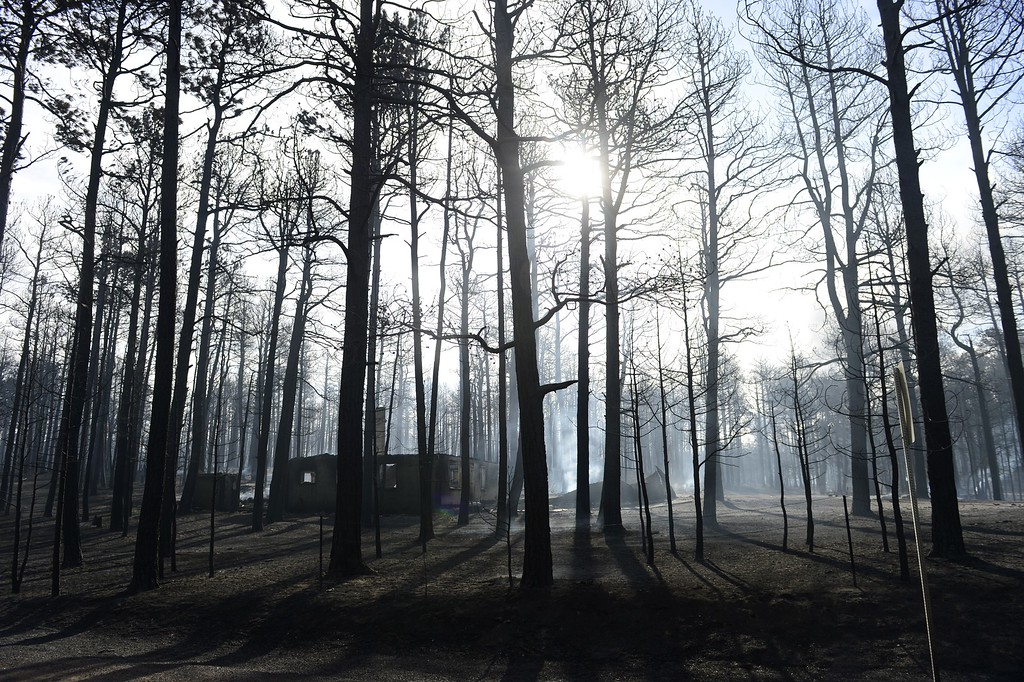 Description of . COLORADO SPRINGS, CO - JUNE 12: A home that was burned in the Black Forest Fire smolders in the early morning sun on Herring Road. Many homes and structures were burned in the area. (Photo by AAron Ontiveroz/The Denver Post