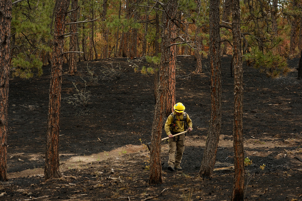 Description of . BLACK FOREST, CO - JUNE 17:   A firefighter with Hanogver Fire Department , who is covered in soot, looks for any kind of hotspots on properties inside of the Black Fire fire zone in Black Forest, CO on June 17, 2013.  The fire is now 75% contained and recent rains are helping firefighters. Photo by Helen H. Richardson/The Denver Post)