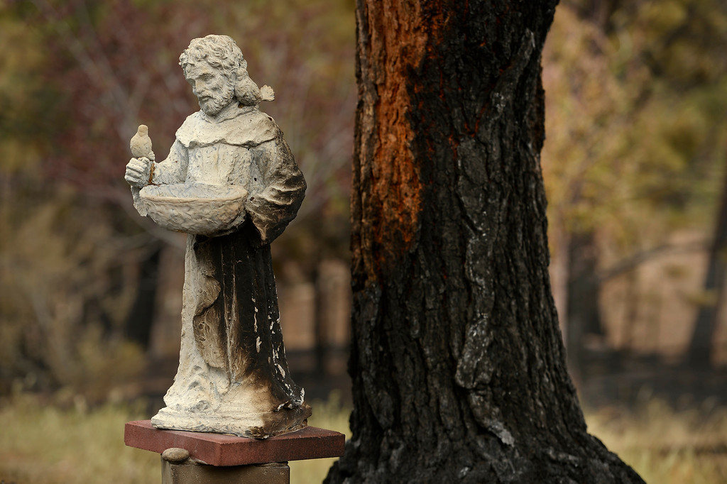 Description of . BLACK FOREST, CO - JUNE 17:  A lovely statue is partially burned next to a tree inside the Black Forest Fire on June 16, 2013.  Photo by Helen H. Richardson/The Denver Post)