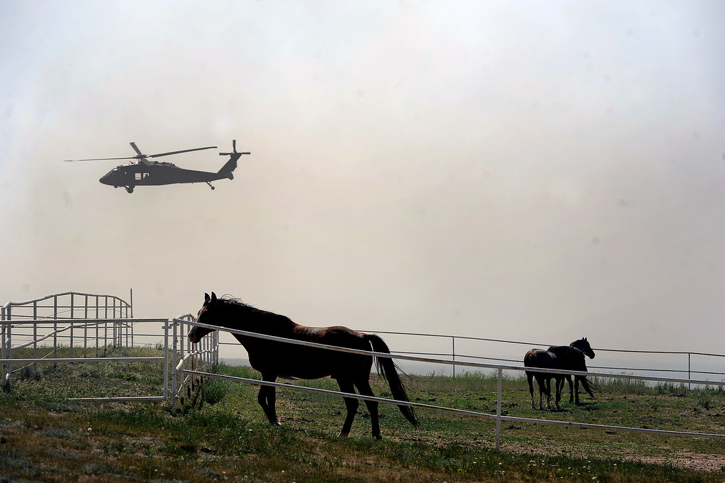 Description of . COLORADO SPRINGS, CO - JUNE 12: Anxious horses pace in their pen as their owner work aggressively to create a fire line around their ranch just off of Black Forest Road to save it from the Black Forest Fire in the Black Forest on June 12, 2013.   Photo by Helen H. Richardson/The Denver Post)
