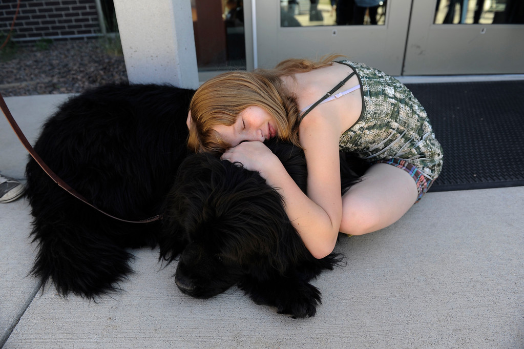 Description of . Black Forest fire evacuee, Ashlee Erick, 11, hugs therapy dog, �Doophous� at the front doors of Palmer Ridge High School after a community meeting Saturday morning, June 15, 2013. Erick\'s family home was destroyed in the fire. (Photo By Andy Cross/The Denver Post)