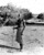 MAR 16 1950
