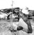 MAR 14 1950  This native Turkana tracker, carrying his spear, fly swatter and head rest, is the usual type employed for rhino hunting in Kenya colony's Northern Frontier province. The Turkanas are tireless trackers and uncanny in following old and faint tracks over rough terrain.  Credit: Denver Post