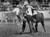 Youngsters Race To Catch 8 Calves During The Rodeo. 1992. Peter Fredin, the Denver Post