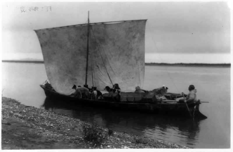 Description of  Title: Arriving home - Noatak.  <br />Date Created/Published: c1929.  <br />Summary: Eskimo and dogs in sailboat.  <br />Photograph by Edward S. Curtis, Curtis (Edward S.) Collection, Library of Congress Prints and Photographs Division Washington, D.C.