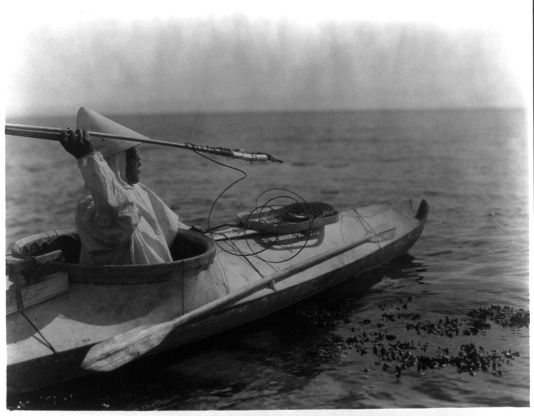 Description of  Title: Ready for the throw--Nunivak.  <br />Date Created/Published: c1929 February 28.  <br />Summary: Eskimo man seated in a kayak prepares to throw spear.  <br />Photograph by Edward S. Curtis, Curtis (Edward S.) Collection, Library of Congress Prints and Photographs Division Washington, D.C.