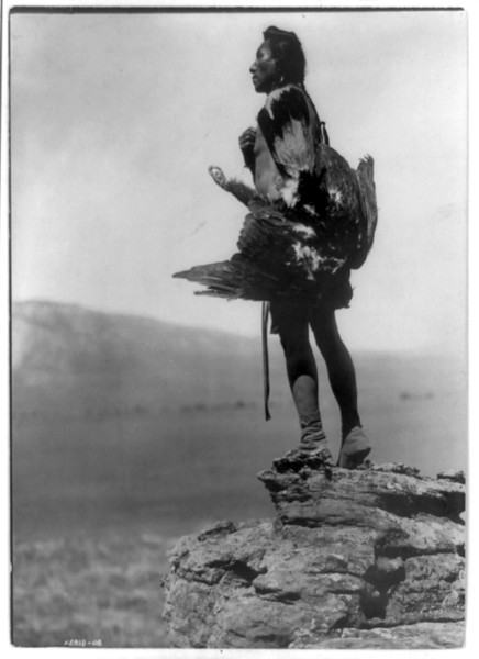 Description of  Title: The eagle catcher.  <br />Date Created/Published: c1908.  <br />Summary: Hidatsa Indian standing on large rock overlooking valley, full-length, left profile, holding eagle.  <br />Photograph by Edward S. Curtis, Curtis (Edward S.) Collection, Library of Congress Prints and Photographs Division Washington, D.C.