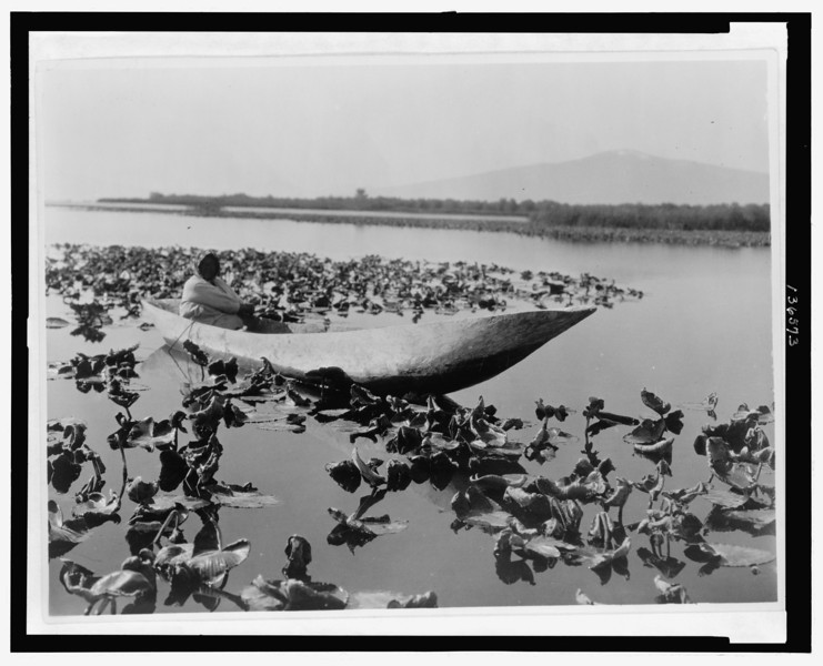 Description of  Title: The wokas season--Klamath.  <br />Date Created/Published: c1923 Jun. 30.  <br />Summary: Photograph shows a Klamath woman in a dugout canoe resting in a field of wokas, or great yellow water lilies (nymphaea polysepala) used as food, probably in the Klamath Basin area of Oregon.  <br />Photograph by Edward S. Curtis, Curtis (Edward S.) Collection, Library of Congress Prints and Photographs Division Washington, D.C.