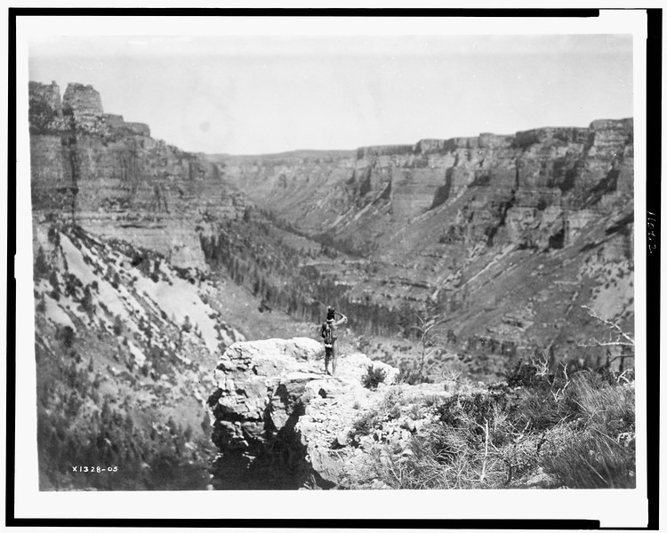 Description of  Title: Black Cañon.  <br />Date Created/Published: c1905.  <br />Summary: Rear view of Crow Indian, standing, overlooking Black Cañon.  <br />Photograph by Edward S. Curtis, Curtis (Edward S.) Collection, Library of Congress Prints and Photographs Division Washington, D.C.