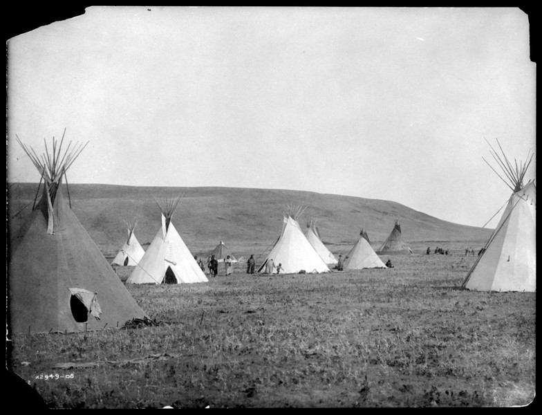 Description of  Title: Atsina camp scene.  <br />Date Created/Published: c1908 November 19.  <br />Summary: Tipis on plains.  <br />Photograph by Edward S. Curtis, Curtis (Edward S.) Collection, Library of Congress Prints and Photographs Division Washington, D.C.