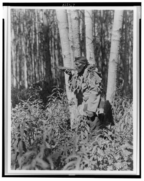 Description of  Title: Calling a moose--Cree.  <br />Date Created/Published: c1927.  <br />Summary: Cree man in woods blowing horn.  <br />Photograph by Edward S. Curtis, Curtis (Edward S.) Collection, Library of Congress Prints and Photographs Division Washington, D.C.