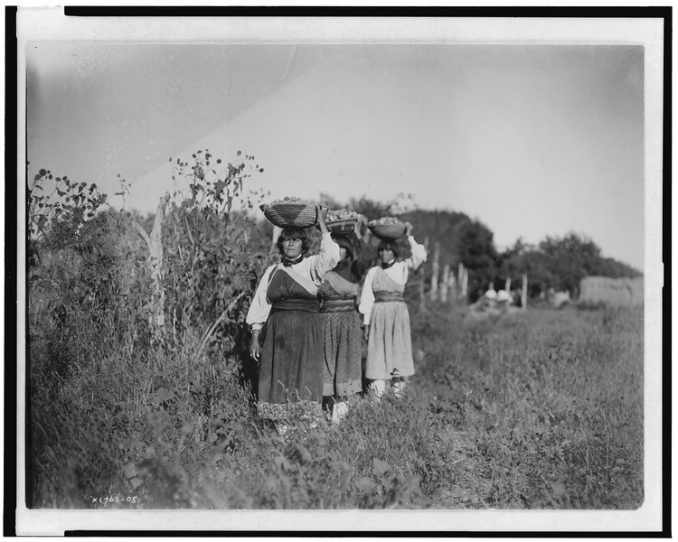 Description of  Title: The Harvest--San Juan.  <br />Date Created/Published: c1905.  <br />Summary: Three women carrying baskets filled with fruit(?) on their heads.  <br />Photograph by Edward S. Curtis, Curtis (Edward S.) Collection, Library of Congress Prints and Photographs Division Washington, D.C.