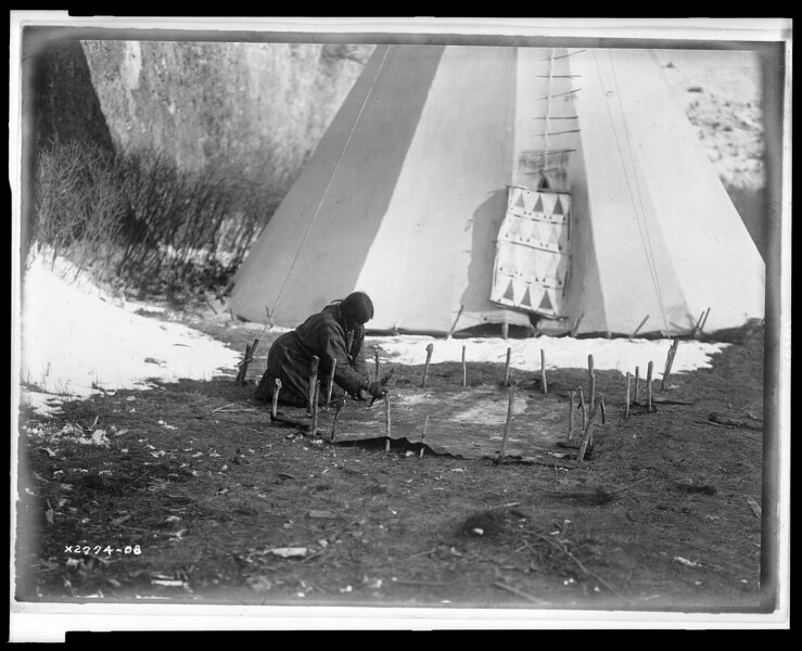 Description of  Title: Hide scraping--Apsaroke.  <br />Date Created/Published: c1908 July 6.  <br />Summary: Apsaroke woman scraping hide that is secured to the ground by numerous stakes, tipi in background.  <br />Photograph by Edward S. Curtis, Curtis (Edward S.) Collection, Library of Congress Prints and Photographs Division Washington, D.C.