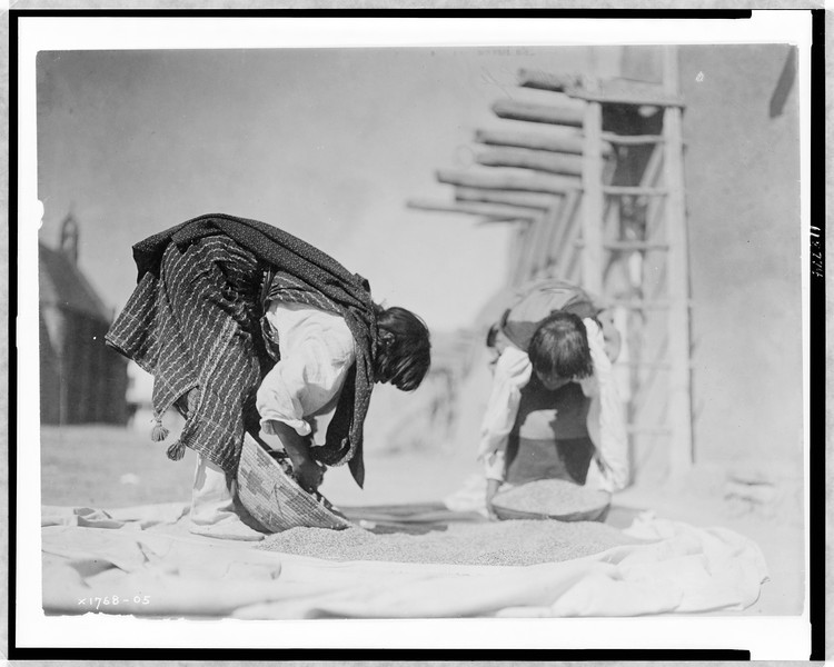 Description of  Title: Cleaning wheat--San Juan.  <br />Other Title: The wheat cleaners.  <br />Date Created/Published: c1905.  <br />Summary: Two Tewa people processing wheat outside pueblo structure, San Juan Pueblo, New Mexico.  <br />Photograph by Edward S. Curtis, Curtis (Edward S.) Collection, Library of Congress Prints and Photographs Division Washington, D.C.