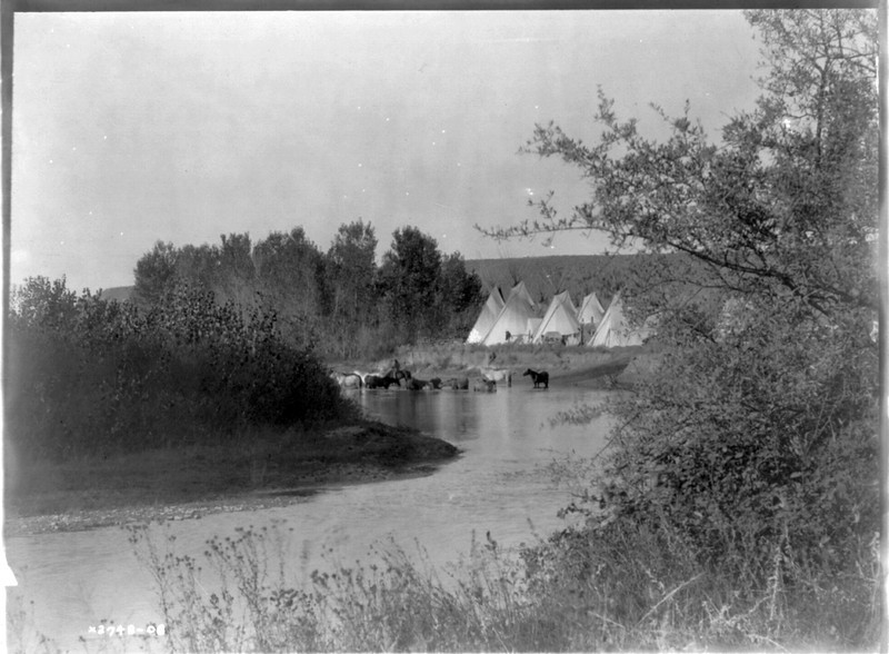 Description of  Title: On the Little Big Horn.  <br />Date Created/Published: c1908 July 6.  <br />Summary: Horses wading in water next to a Crow tipi encampment.  <br />Photograph by Edward S. Curtis, Curtis (Edward S.) Collection, Library of Congress Prints and Photographs Division Washington, D.C.