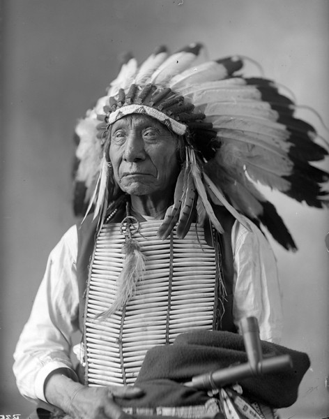 Description of  Red Cloud, Dakota Chief, seated holding peace pipe, wearing war bonnet, bust. Barry, D. F. (David Frances), photographer. (Denver Public Library; Western History Collection)