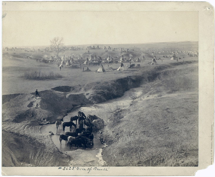 Description of  Title: Villa of Brule<br />A Lakota tipi camp near Pine Ridge, in background; horses at White Clay Creek watering hole, in the foreground. 1891.<br />Repository: Library of Congress Prints and Photographs Division Washington, D.C. 20540