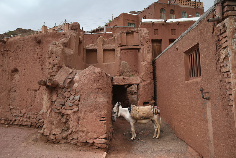 Description of  ABYANEH, IRAN - JUNE 03:  A donkey stands amongst traditional mud brick homes on June 3, 2014 in the ancient mountain village of Abyaneh, Iran. Iran on June 4, will mark the 25th anniversary of the death of the Ayatollah Khomeini and his legacy of the Islamic Revolution.  (Photo by John Moore/Getty Images)