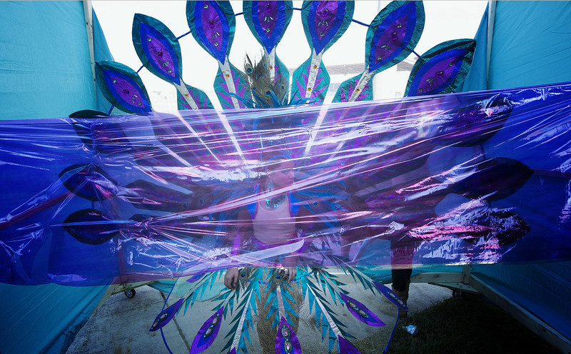 Description of  Miya Marcao, dressed as a peacock, waits to break out of cellophane at The Miami Broward Junior Carnival parade, Sunday, Oct. 5, 2014, in Lauderhill, Fla. Young masqueraders were judged on their creativity, presentation, originality and craftsmanship of their vibrant and colorful masquerade costumes. (AP Photo/J Pat Carter)