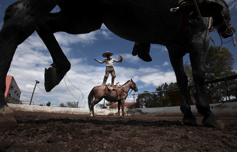 """Description of  In this Aug. 31, 2014 photo, charro Leonardo Flores, stands on his horse Canelito while showing off his roping skills; a move called, """"florear sobre el caballo,"""" during a practice session at a corral in southern Mexico City. """"Charreria,"""" the Mexican version of a rodeo, usually consists of nine scoring events that include horses and or cattle. It is Mexico's official national sport as well as being part of the pride and tradition of the Mexican culture. (AP Photo/Marco Ugarte)"""