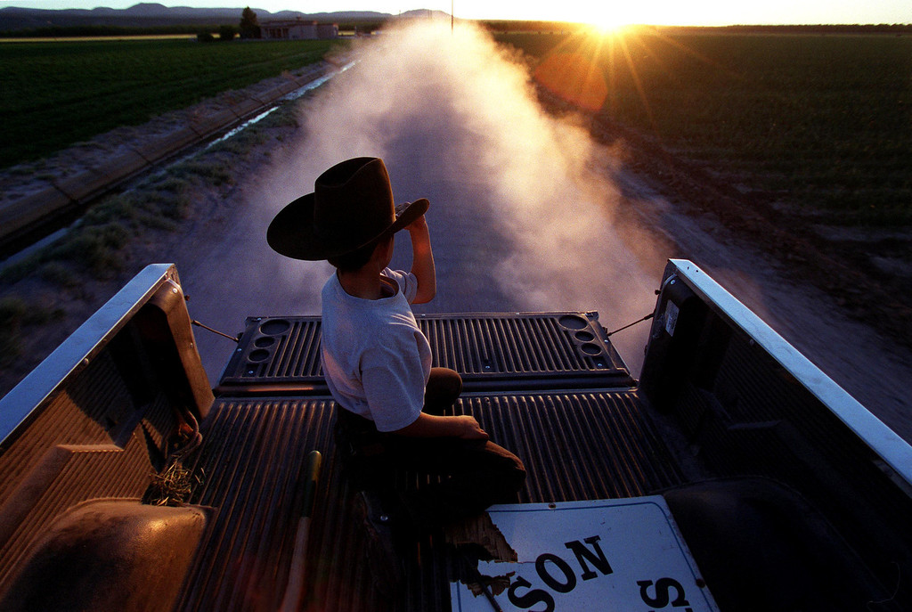 . 9-year-old Alex Carson sits in the back of his grandfather\'s pick-up as the duo head out to their chile fields before the sun sets.  Nick Carson, the boys grandfather, is owner of Rio Valley Chili Incorporated, a chili processing plant that turns chile peppers into powders and spices. (Photo by Helen H. Richardson/The Denver Post)