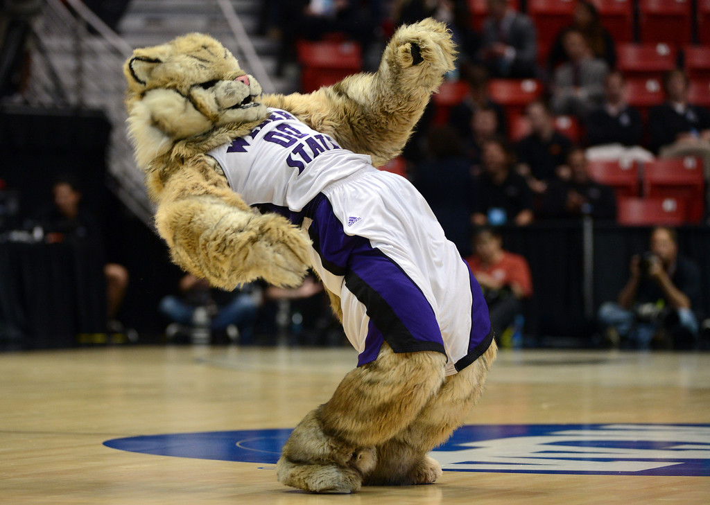 Description of . The Weber State Wildcats mascot cheers on his team during their game against the Arizona Wildcats in the second round of the 2014 NCAA Men's Basketball Tournament at Viejas Arena on March 21, 2014 in San Diego, California.  (Photo by Donald Miralle/Getty Images)