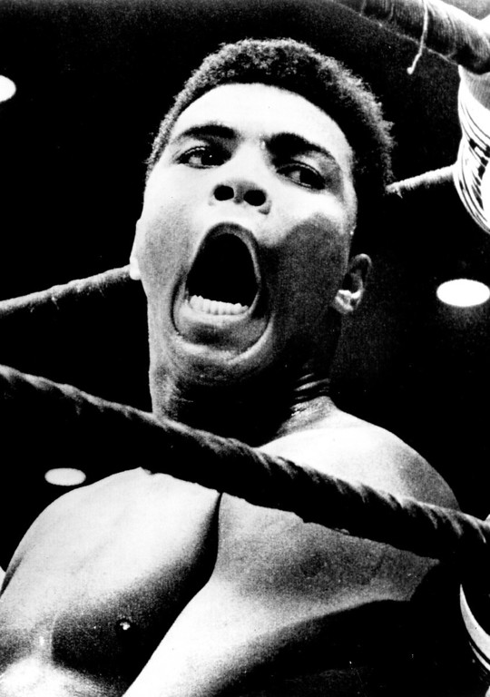 Description of . MUHAMMAD ALI, 1964.  Denver Post Library photo archive