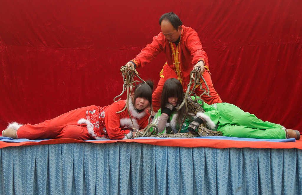 Description of . Performers put on a show using a python and snakes at the Ditan Temple Fair celebrating the Chinese Lunar New Year in Beijing February 11, 2013.REUTERS/Jason Lee