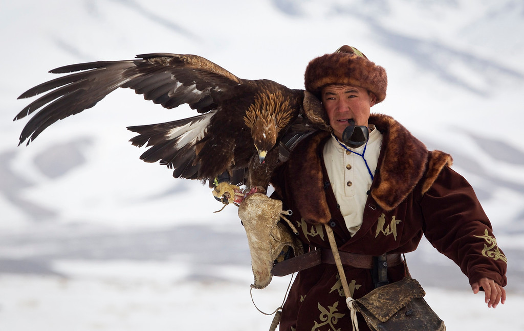 Description of . A Kazakh hunter walks with his tamed golden eagle during an annual hunting competition in Chengelsy Gorge, some 150 km (93 miles) east of Almaty February 22, 2013. Picture taken February 22, 2013.  REUTERS/Shamil Zhumatov