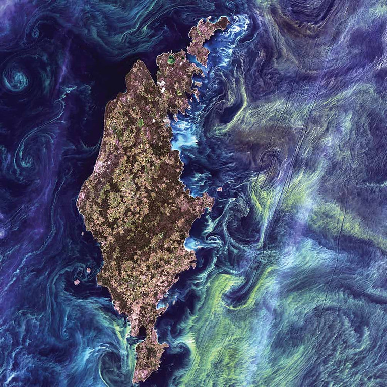 Description of . Phytoplankton Bloom, Baltic Sea In this Landsat 7 image from 2005, massive congregations of greenish phytoplankton swirl in the dark water around Gotland, a Swedish island in the Baltic Sea. Phytoplankton are microscopic marine plants that form the first link in nearly all ocean food chains. Population explosions, or blooms, of phytoplankton, like the one shown here, occur when deep currents bring nutrients up to sunlit surface waters, fueling the growth and reproduction of these tiny, photosynthesizing organisms.   NASA