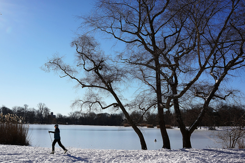 Description of . A woman cross country skies following a snow storm in Prospect Park January 4, 2014 in the Brooklyn borough of New York City. The major winter snowstorm named