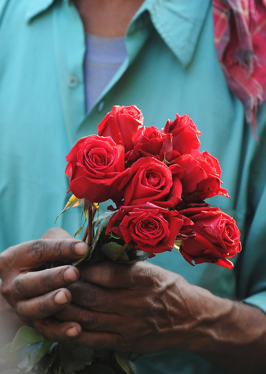 Description of . An Indian farmer arranges flowers at a wholesale flower market in Kolkata, on February 14, 2013. On Valentine's day the floriculture business in the city is booming because of the increased demand nationally. AFP PHOTO/ Dibyangshu SARKAR/AFP/Getty Images