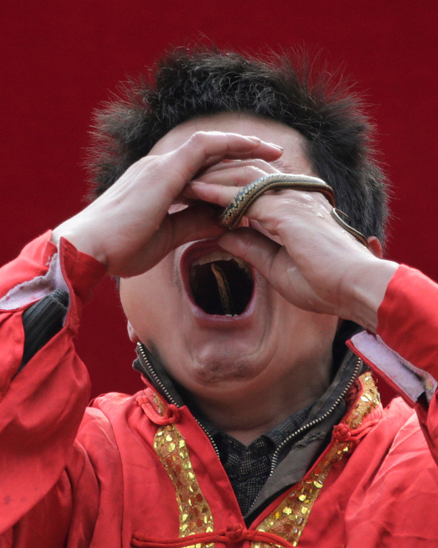Description of . A performer inserts a live snake through his nose and mouth during a performance at the Ditan Temple Fair celebrating the Chinese Lunar New Year in Beijing February 11, 2013. REUTERS/Petar Kujundzic