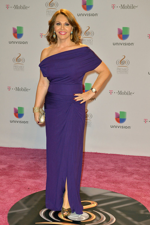 Description of . María Elena Salinas arrives at the 25th Anniversary of Univision's
