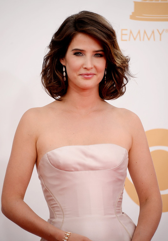 Description of . Actress Cobie Smulders arrives at the 65th Annual Primetime Emmy Awards held at Nokia Theatre L.A. Live on September 22, 2013 in Los Angeles, California.  (Photo by Frazer Harrison/Getty Images)