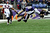 Tight end Dennis Pitta #88 of the Baltimore Ravens drops a pass against the Denver Broncos in the second quarter at M&T Bank Stadium on December 16, 2012 in Baltimore, Maryland. The Denver Broncos won, 34-17.(Photo by Patrick Smith/Getty Images)