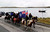 Falkland islanders ride their horses during a parade in Stanley, March 10, 2013. Voters in the remote British-ruled Falkland Islands hold a referendum on their future today that seeks to challenge Argentina's increasingly vocal sovereignty claim. REUTERS/Marcos Brindicci