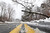 A fallen tree blocks one side of Earlysville Road in Charlottesville, Va.as snow continues to fall  Wednesday, March 6, 2013.  A  winter storm continues to pile on snow in central and western portions of the state.   (AP Photo/The Daily Progress, Sabrina Schaeffer)