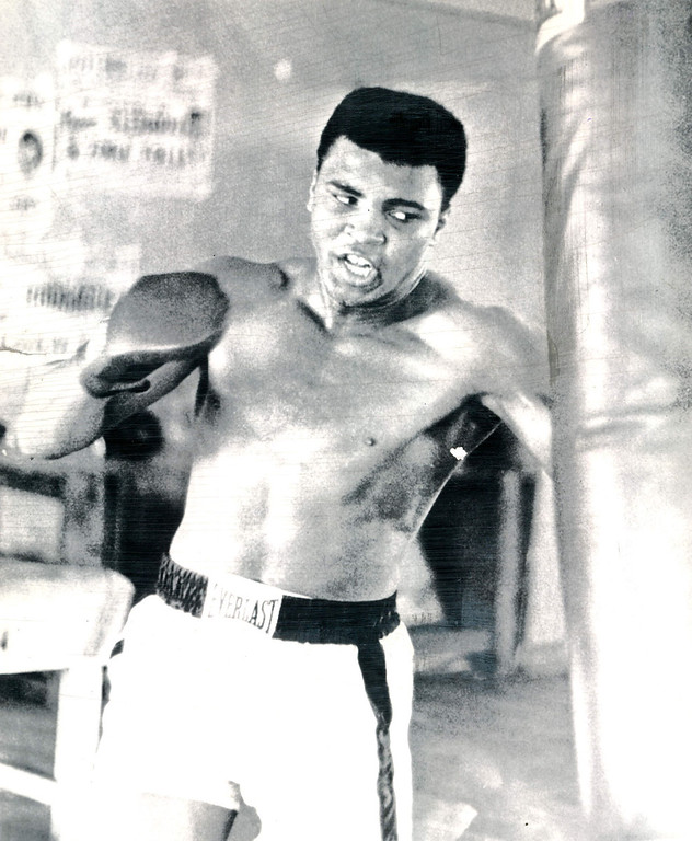 Description of . Cassius Clay punches the heavy bag in one of his daily workouts at Miami Beach for the Feb. 25 championship bout with heavyweight Sonny Liston.  1964. Credit: AP