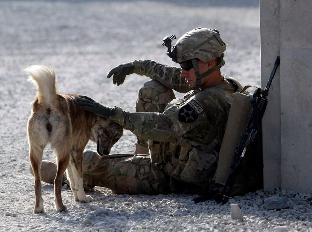 """Description of . U.S. Army soldier SPC Collin Pallesen of \""""Attack\"""" Co, 2nd Battalion, 1st Infantry Regiment plays with an Afghanistan dog named \""""Tango\"""" before heading out of Combat Outpost Kandalay to patrol in Zharay district, in Kandahar province, southern Afghanistan October 27, 2012. \""""Tango\"""" always comes with the platoon during patrols, Pallesen said.   REUTERS/Erik De Castro"""